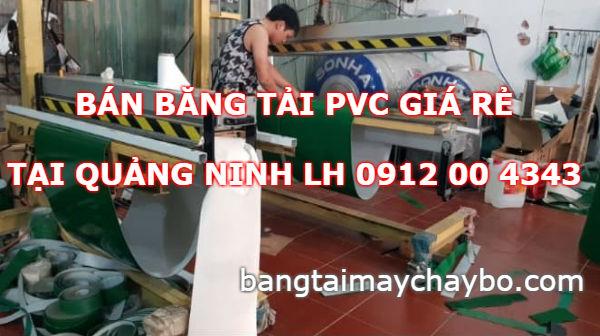 Băng tải PVC giá rẻ tại Quảng Ninh mua ở đâu
